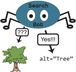 Search Bot Image